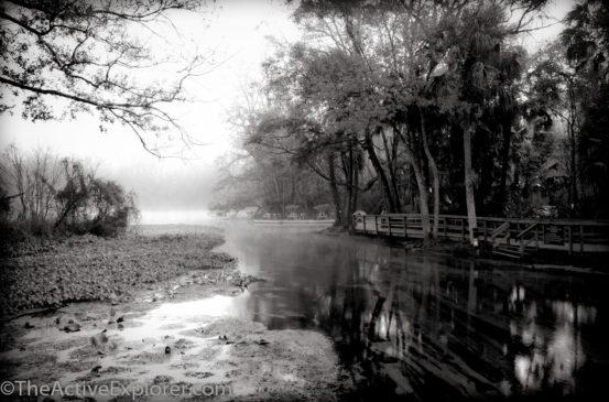 A misty morning at Wekiwa Springs