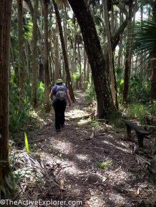 Orlando Wetlands Park-7