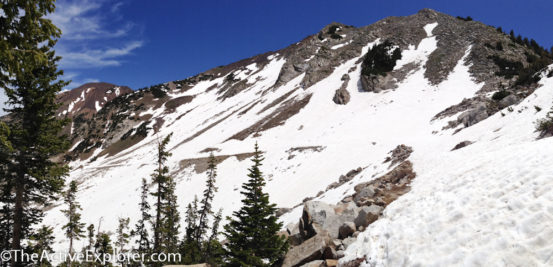 Snow-packed trail to White Pine Lake.