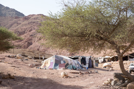 Bedouin Camp in Dana Reserve