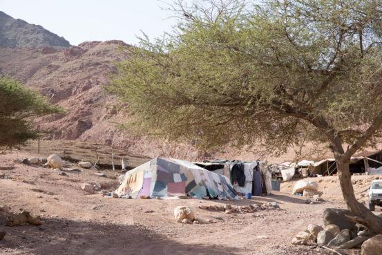 Bedouin Camp in Dana Reserve