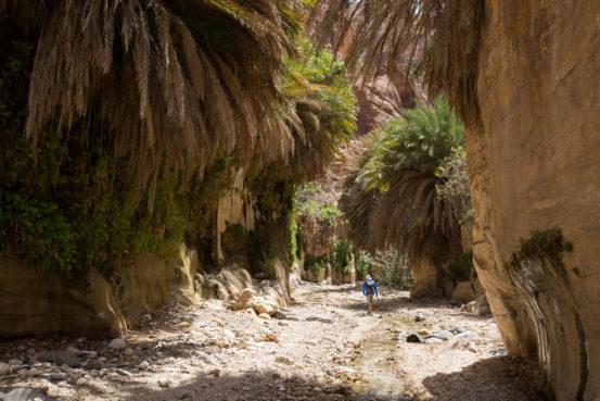 Wadi Ghwayr, Jordan